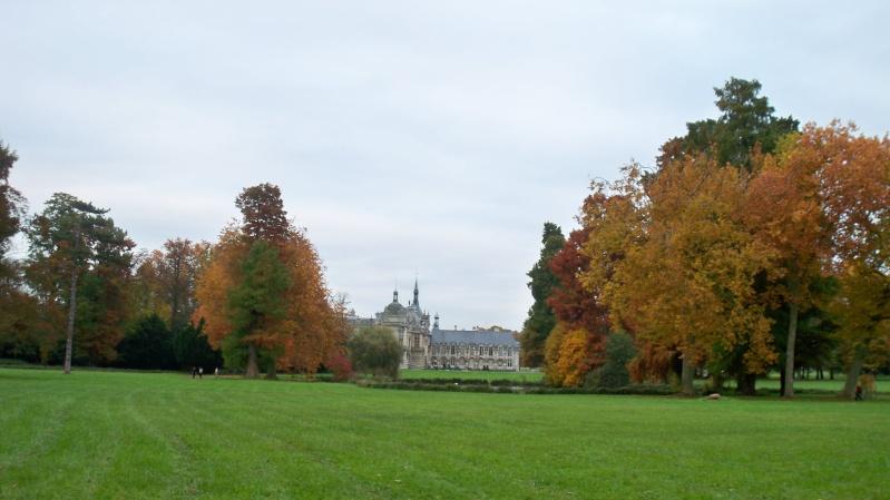 Le domaine de Chantilly - Page 12 100_4247
