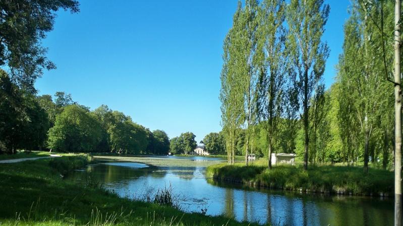 Le parc d'Ermenonville - Page 2 100_5233