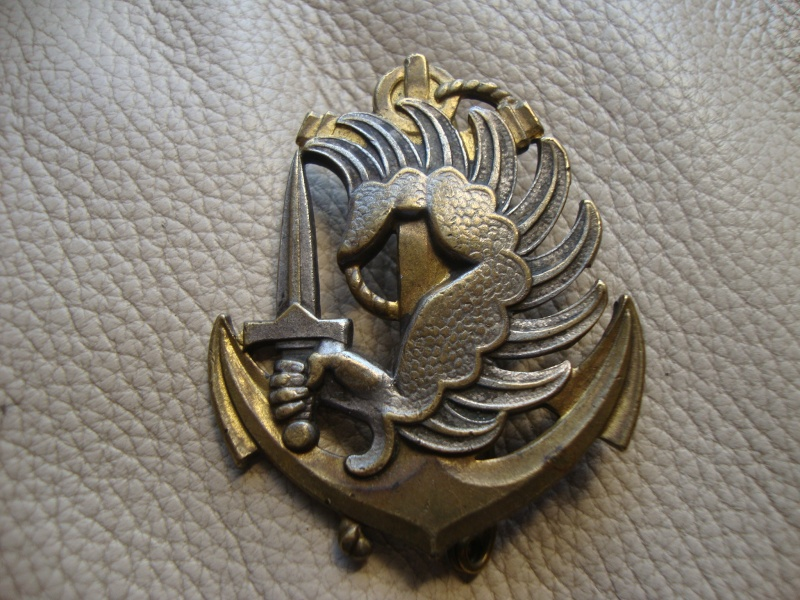 8e RPIMa Cap Badge Dsc06310