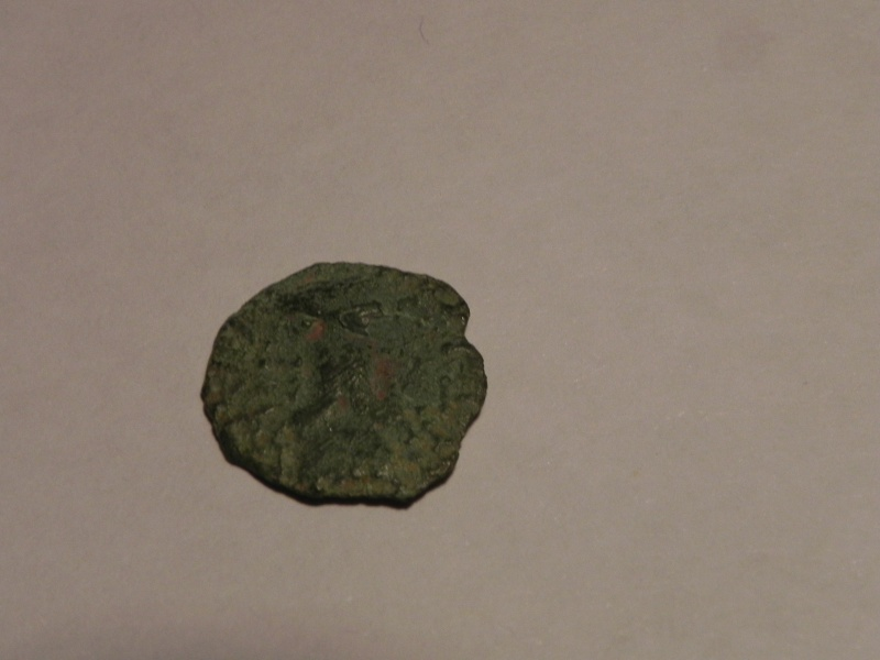 Bronze CAITIO/AMANDI (Atrébates) [WM n° 8129] Atreba10