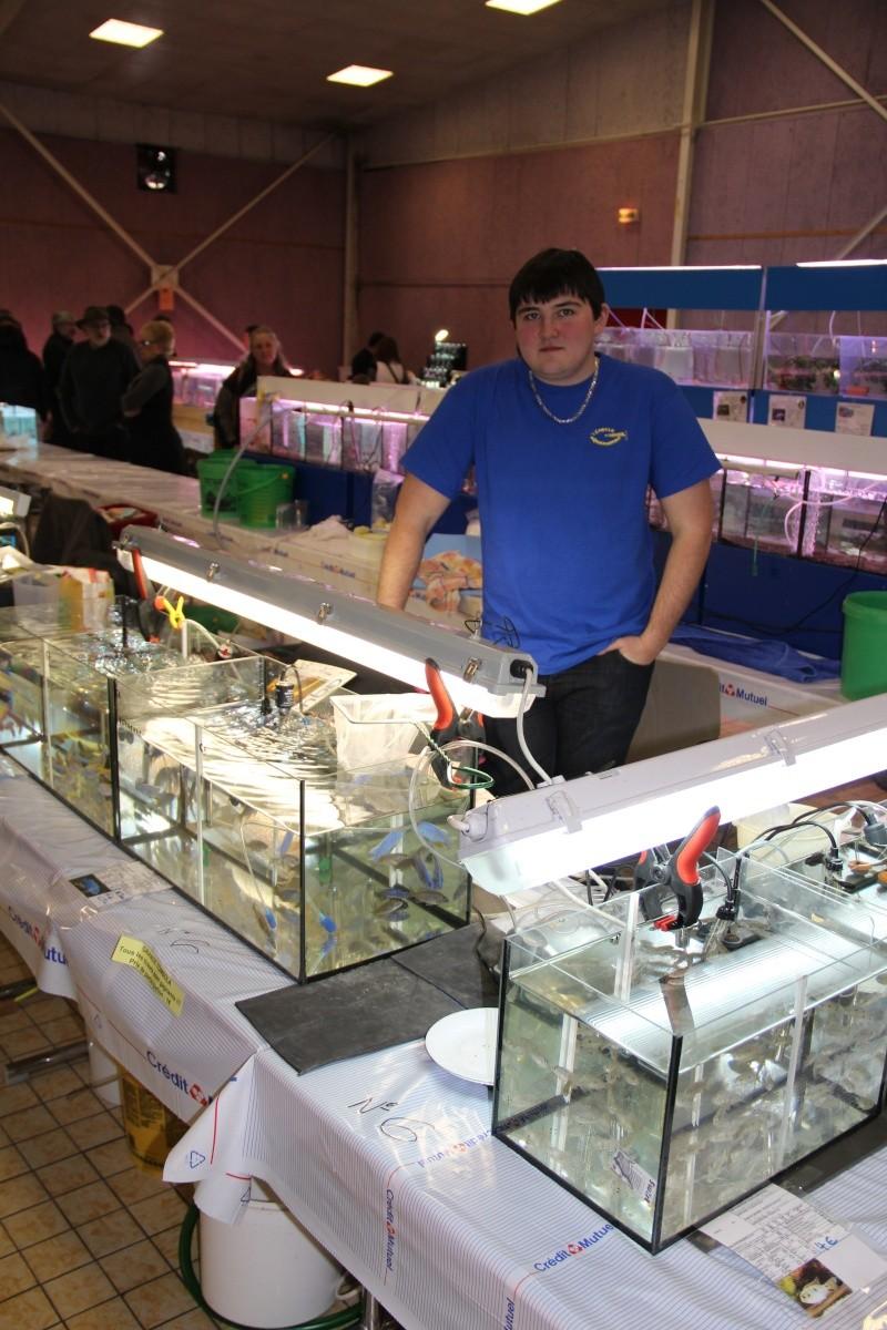 Bourse aquariophile de Sarreguemines - 12 fév. 2012 - Page 5 Img_0232