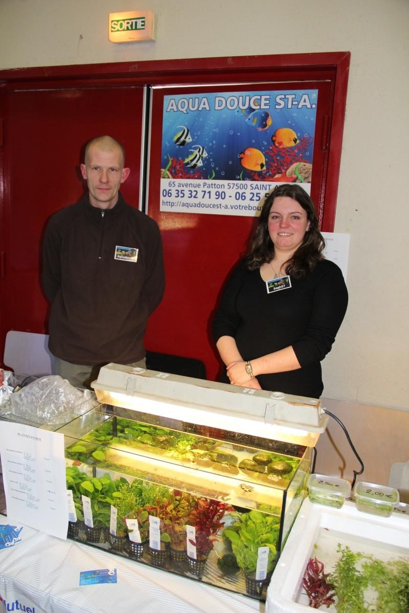Bourse aquariophile de Sarreguemines - 12 fév. 2012 - Page 5 Img_0313