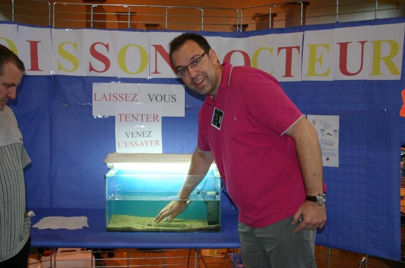 Bourse aux poissons à Metz Plantières le 18 septembre11 - Page 2 Img_4814
