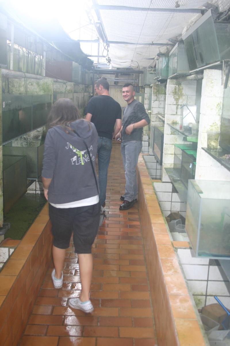 Sortie aquafarm-paradise le 1/10/11 à 14H - Page 4 Img_4821