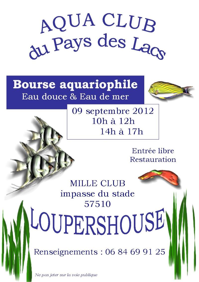 Bourse à Loupershouse le 9 Septembre 2012 Loup-014