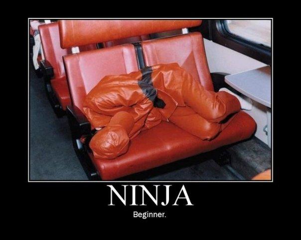 Les délires de Maître Adapa - Page 2 Ninja10