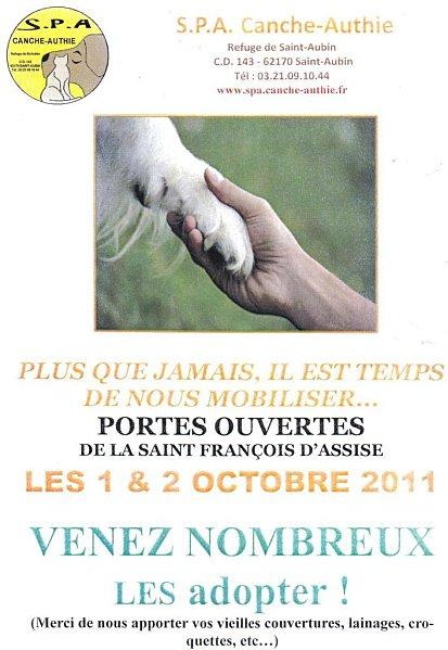 l'appel de désespoir de la fourrière du 62 Canche-Authie SAINT-AUBAIN 55 CHIENS A SORTIR AVANT LE 6 OCTOBRE 2011 SINON EUTHA Portes10