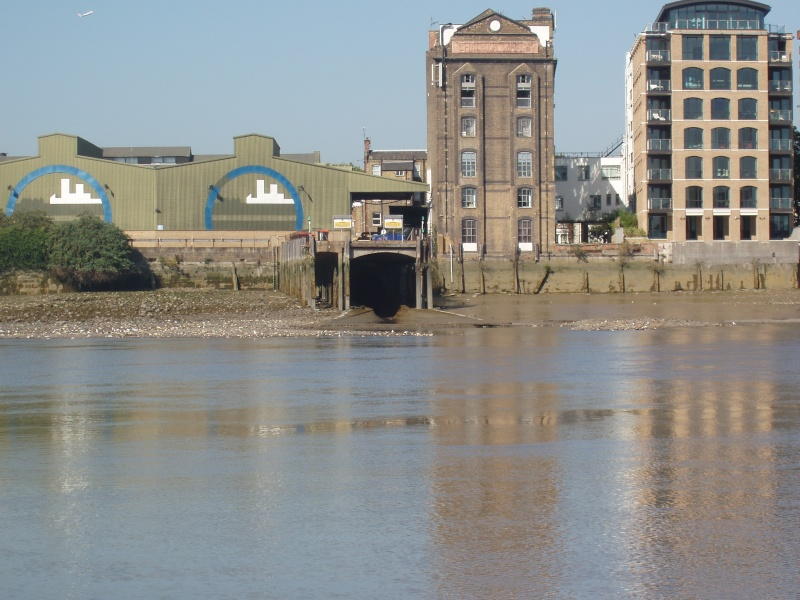 Sewage discharges Levels since June 2011 P1010112