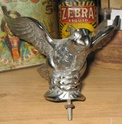 d ou vient cette oiseau  pour john dufrenne  Img_3611