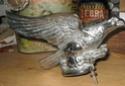 d ou vient cette oiseau  pour john dufrenne  Img_3612