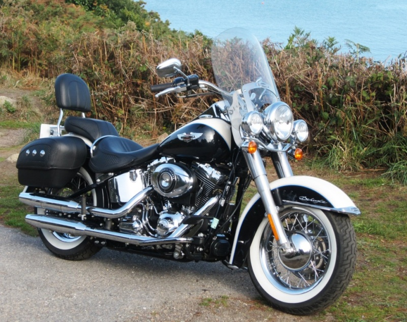 SOFTAIL DELUXE Comp1_10