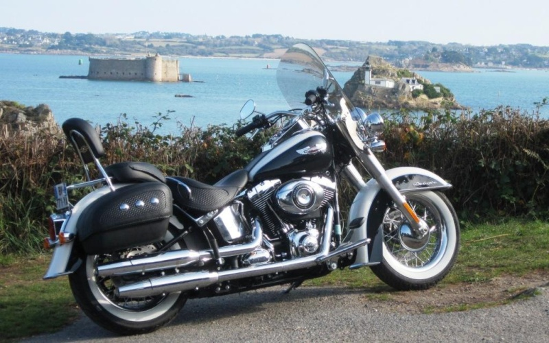 SOFTAIL DELUXE Comp_310
