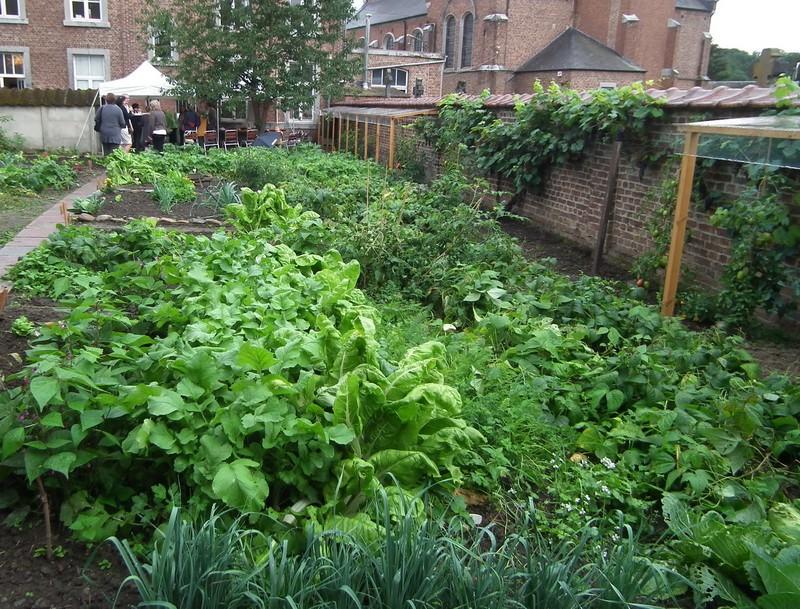 jardins partagé Jardin10