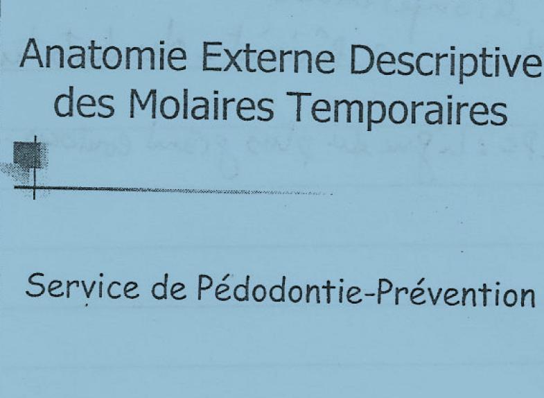 anatomie - Anatomie externe descriptive des molaires temporaires Ana10