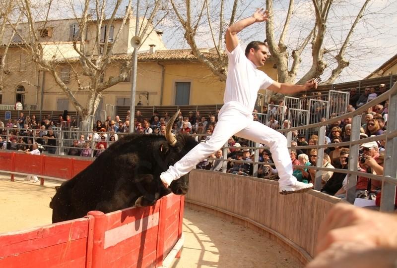 2° Journée du Printemps des Royales CUILLE 25-03-2012 2a_jou10