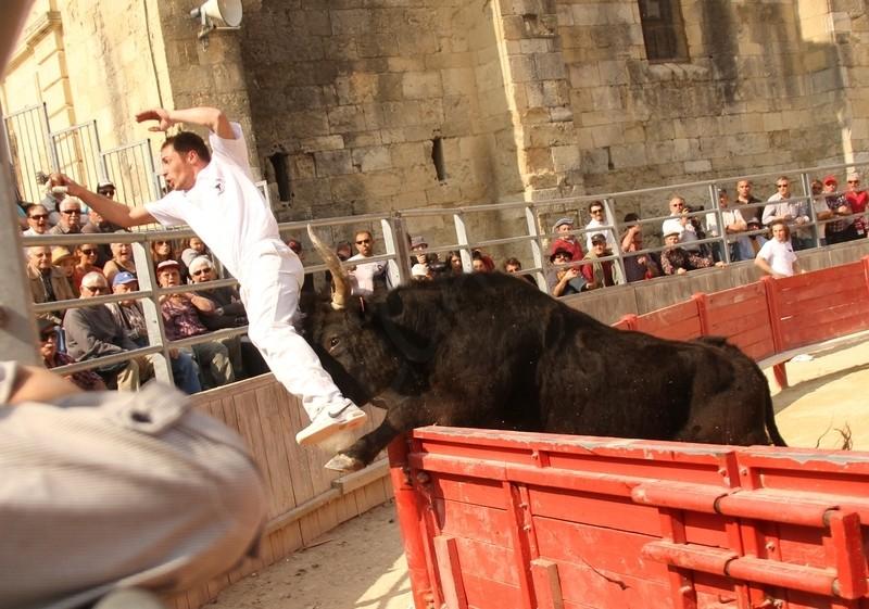 2° Journée du Printemps des Royales CUILLE 25-03-2012 2a_jou11