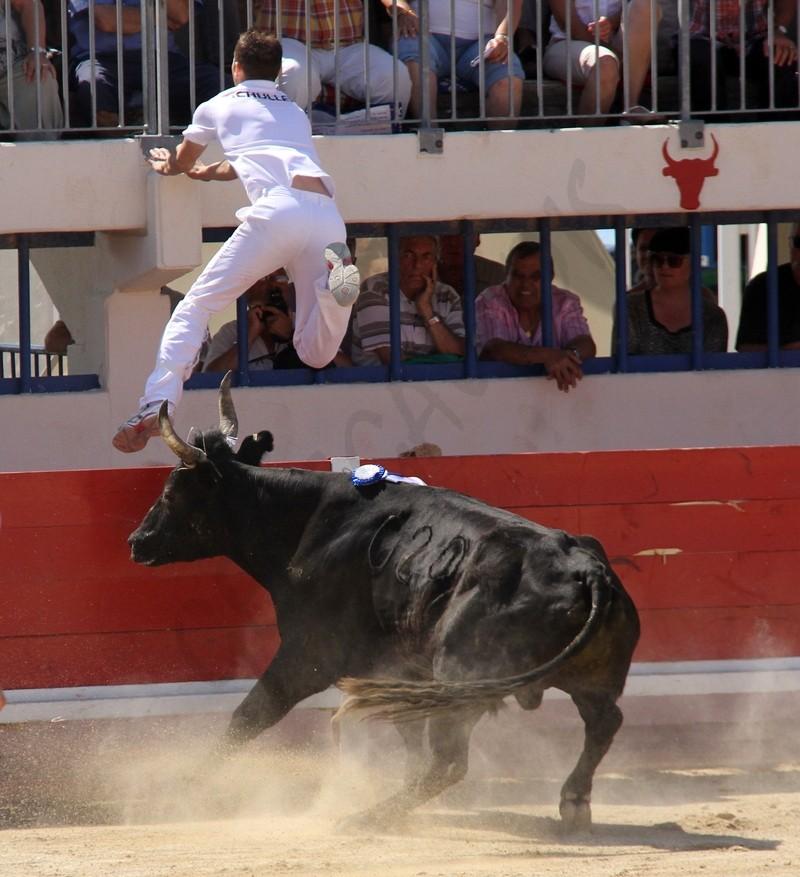 AS - Concours de Manades - 27-05-2012 As-gra11