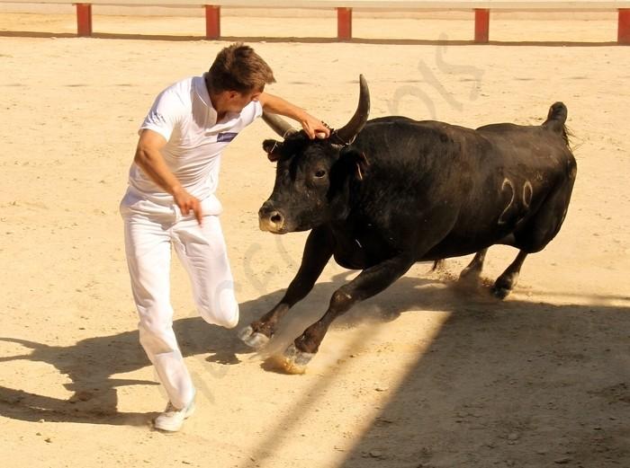 Baillargues 1ère-journée-du-Trophée-JF-Brouillet-29-07-2012 Avenir25