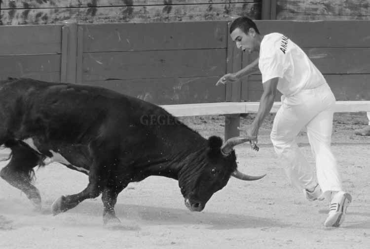 Castries  30.07-2011 Castri11