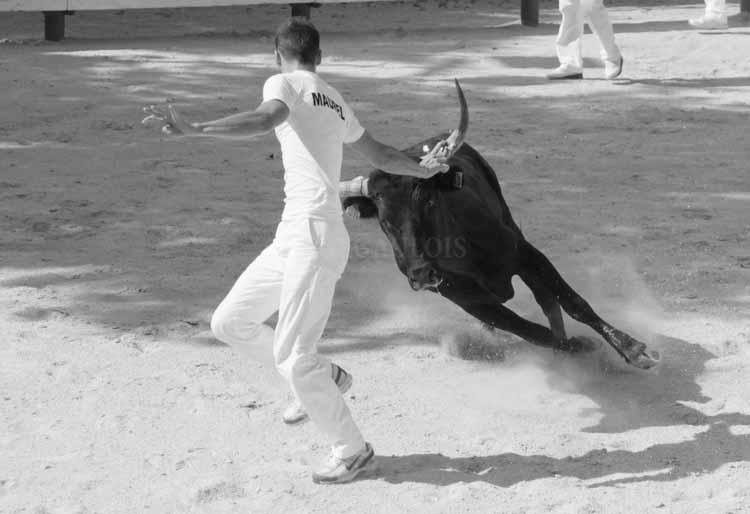 Castries  30.07-2011 Castri13