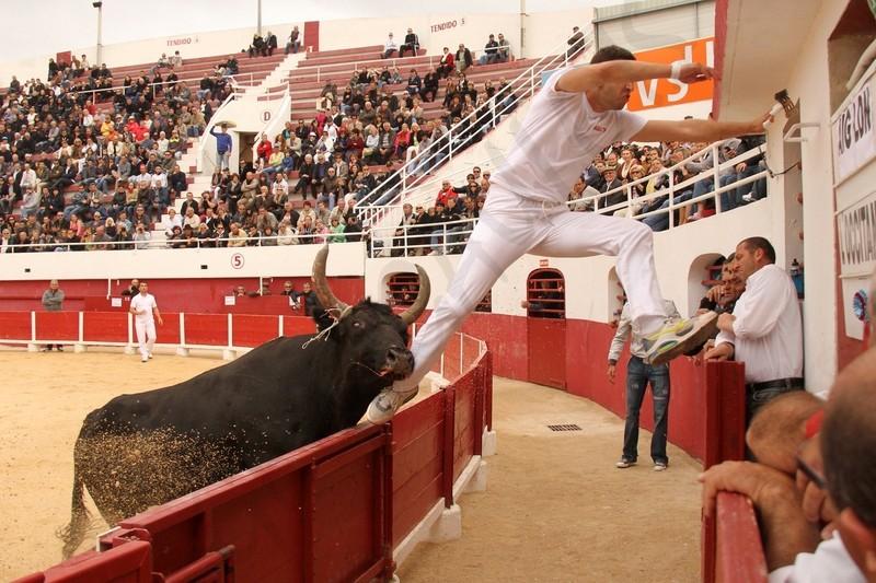 Concours de Manades PALAVAS  08-05-2012 Concou16