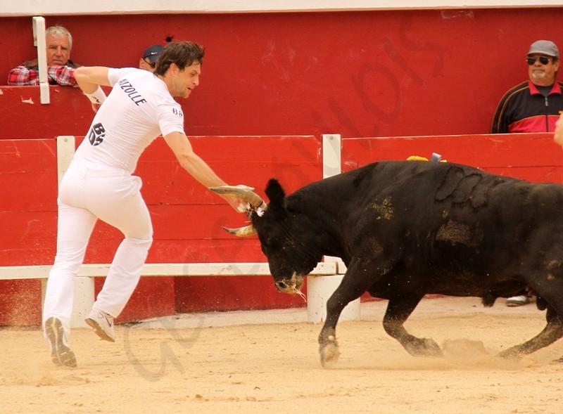 Concours de Manades PALAVAS  08-05-2012 Concou17