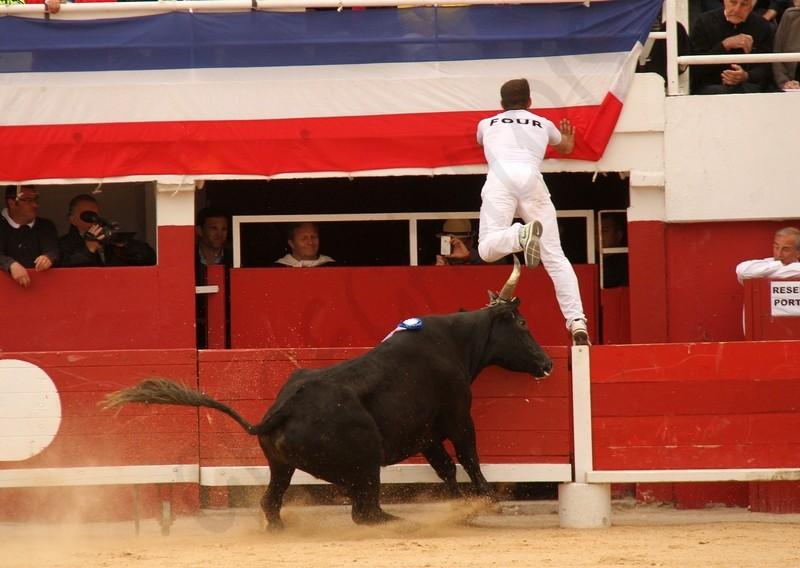 Concours de Manades PALAVAS  08-05-2012 Concou18