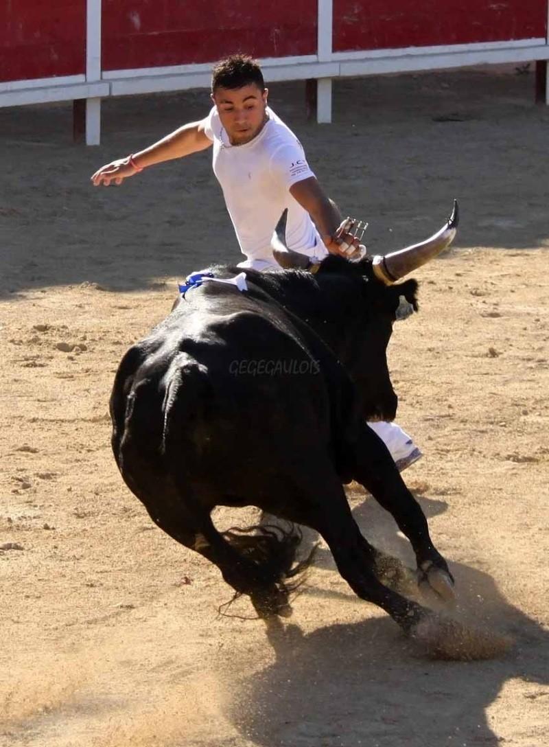 Grau du Roi  Taureaux Jeunes  12-09-2011 Course30
