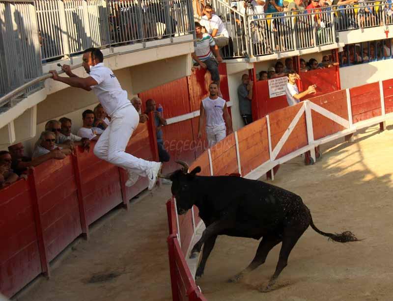 Course mixte et les adieux de N. NOGUERA et B.KALED  16-09-2011 Course38