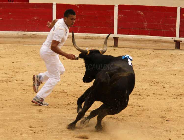 FINALE de Ficelle d'Argent  PEROLS  14-08-2011 Finale17