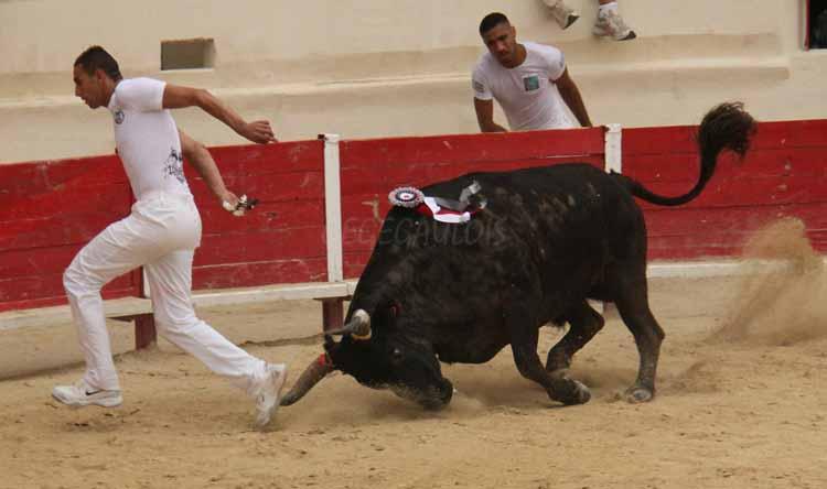 FINALE de Ficelle d'Argent  PEROLS  14-08-2011 Finale18