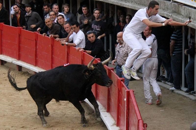 LUNEL  Finale du Trophée Pescalune 30-10-2011 Finale51