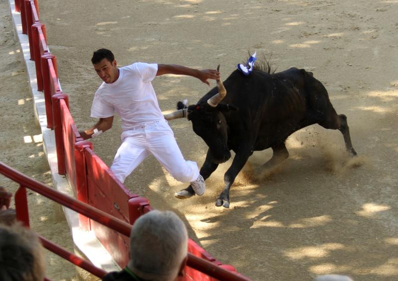 LANSARGUES - AS - Concours de Manades-17-06-2012 Lansar10