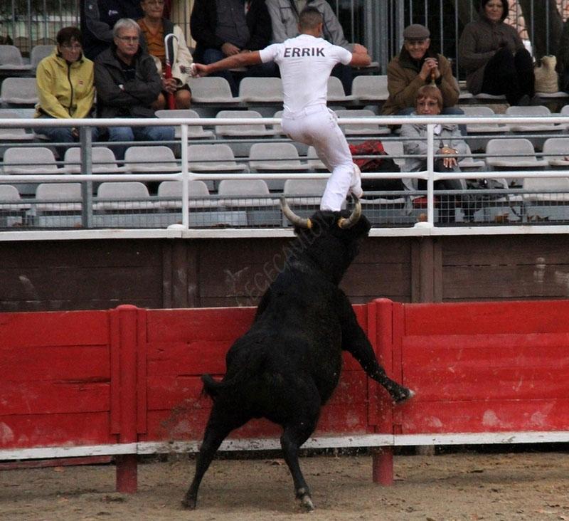 Les ESPOIRS de la Manade BLATIERE-BESSAC  11-11-2011 - Vergèze Les-es13