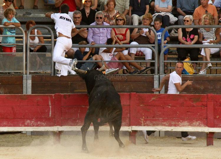 Concours de Manades  VENDARGUES  22-07-2011 Vendar16