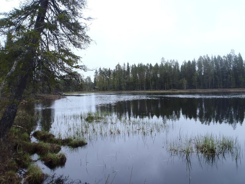 SWEDEN – Le retour – P6030117