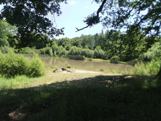 à l'étang Etang110