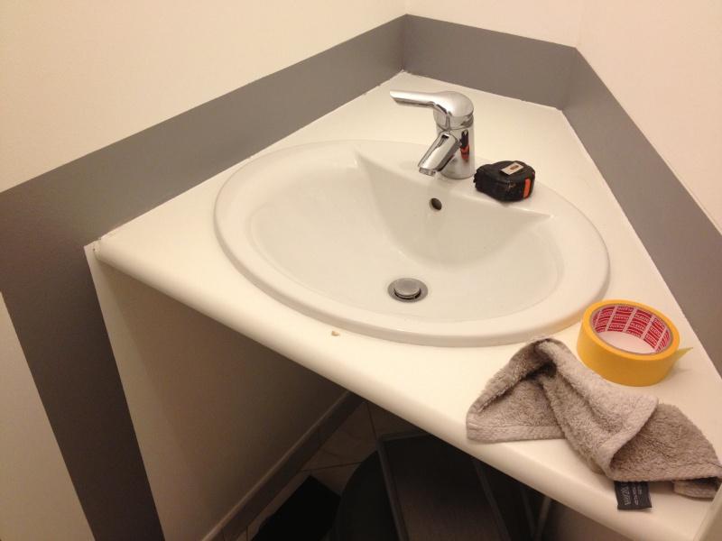 Aide peinture des toilettes les PHOTOS en dernière page Img_0212