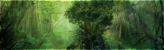 Feleth, le monde du milieu Jungle10