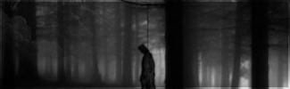 Forêt noire Vallae10