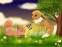 RenderShipping [Evoli/Eevee x Goupix/vulpix] ♥ Playin10