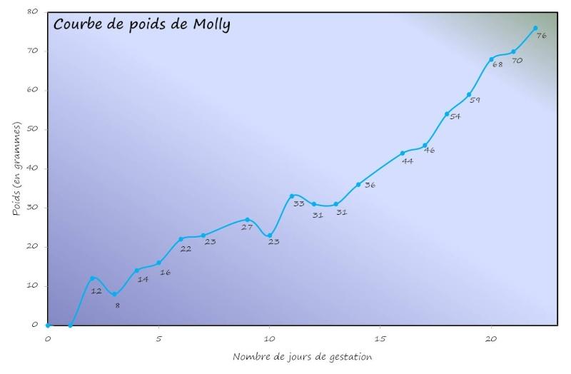 Les Microbes de Molly et Crumble Gestat16