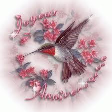 De Cochonfucius à Thunderbird Images18