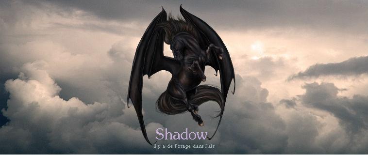 Perso Winter Shadow12