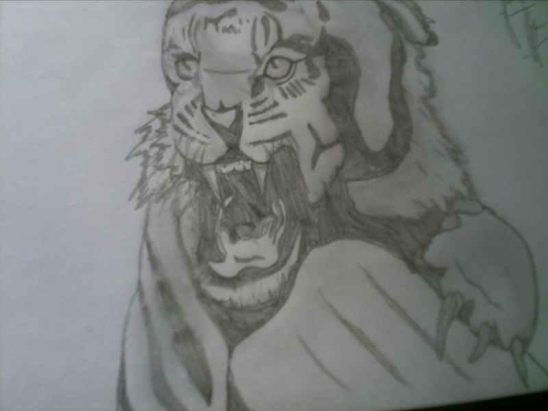 NEW CONTEST *DRAWING* Pict0212