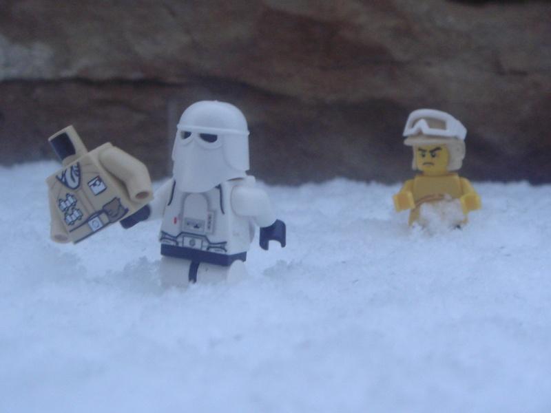[L'hiver de la minifig] Les photos Neige10