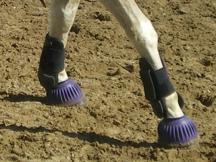 protections, bandes, cloches, taille cheval et poney 2110