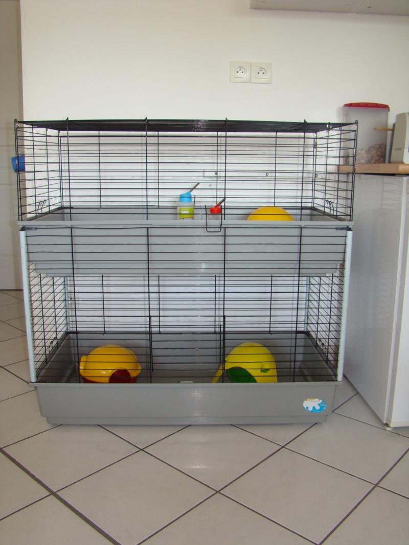 Recherche cage dans le 34 Dsc06311