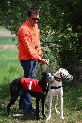Les galgos à l'ENC de Monteux (84) - 14/04/2012 Img_0110