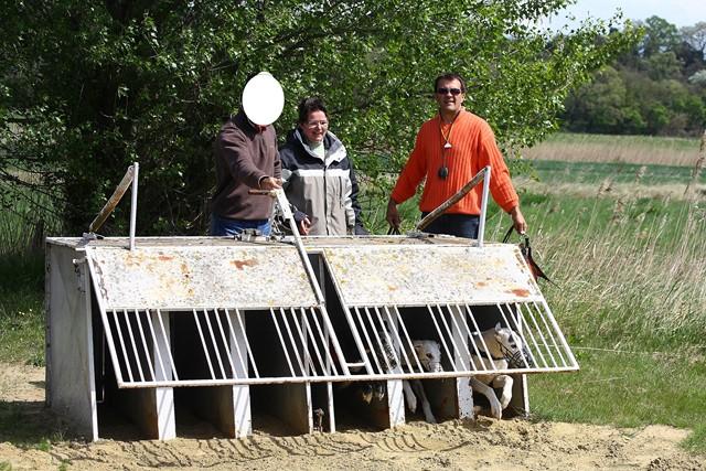 Les galgos à l'ENC de Monteux (84) - 14/04/2012 Img_0111